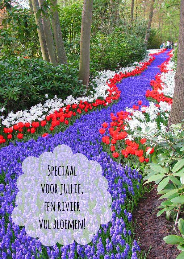 Felicitatiekaarten - rivier vol bloemen