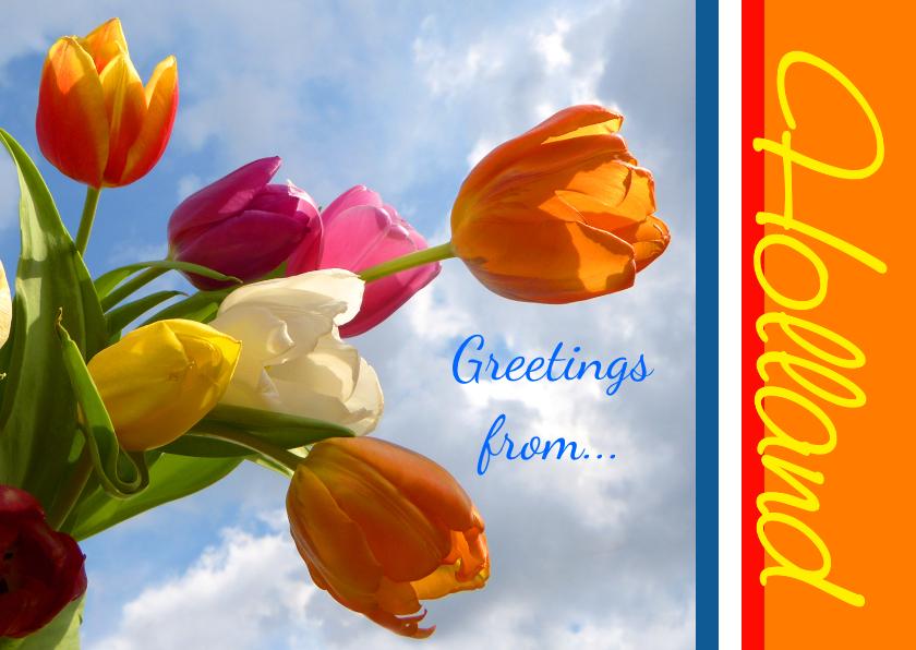Ansichtkaarten - Ansicht Holland Greeting Tulips