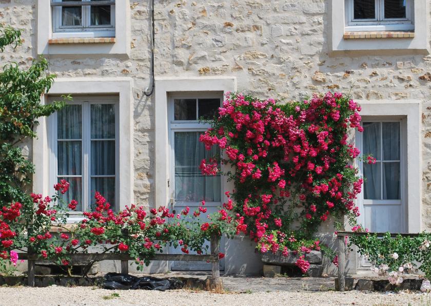 Ansichtkaarten - Fotokaart bijzonder huis in frankrijk