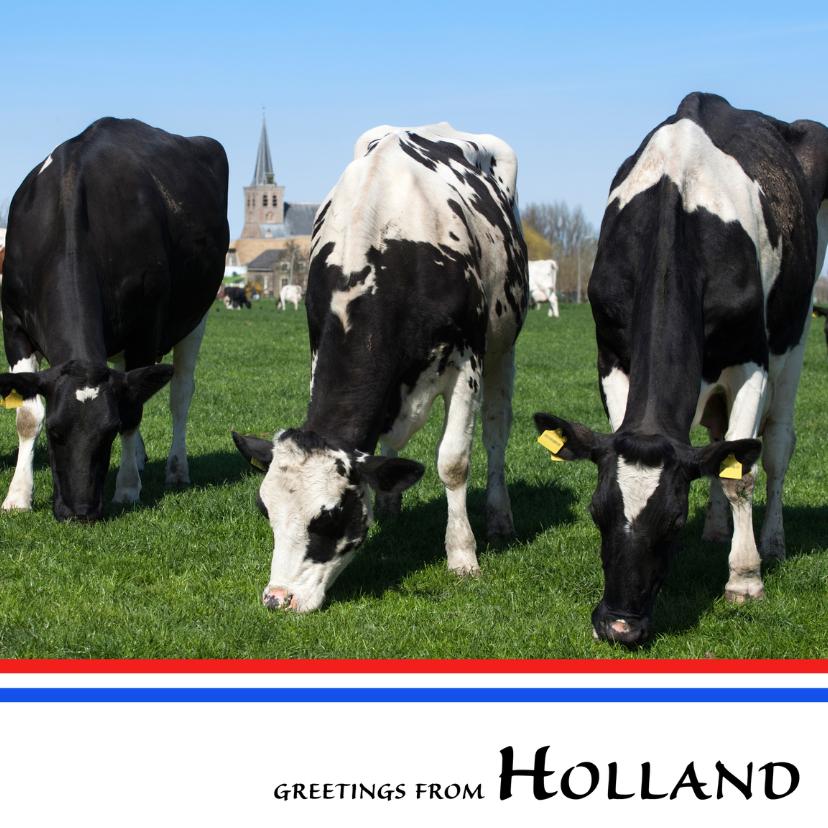 Ansichtkaarten - Greetings from Holland VIII