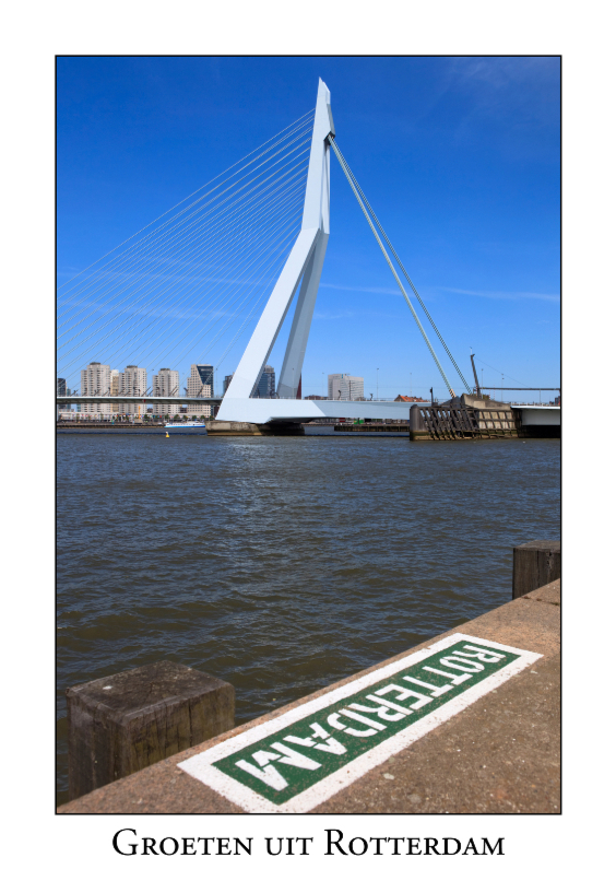 Ansichtkaarten - Groeten uit Rotterdam VIII