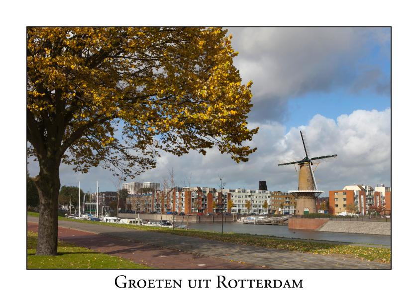 Ansichtkaarten - Groeten uit Rotterdam XV