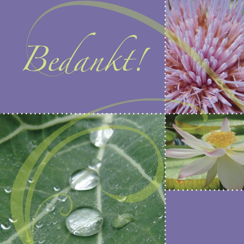 Bedankkaartjes - Bedankkaart met bloemen en dauwdruppels