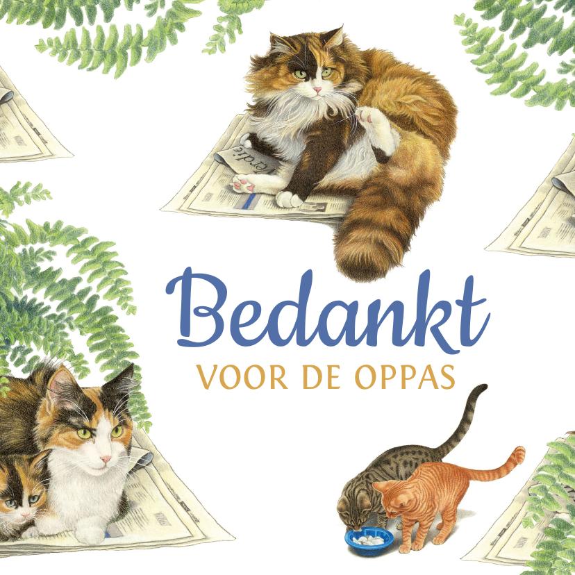 Bedankkaartjes - Bedankt voor de oppas katten