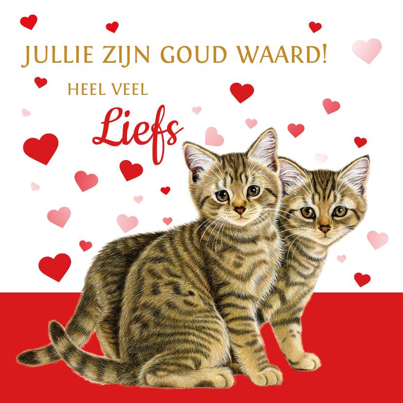 Bedankkaartjes - Jullie zijn goud waard kittens en hartjes