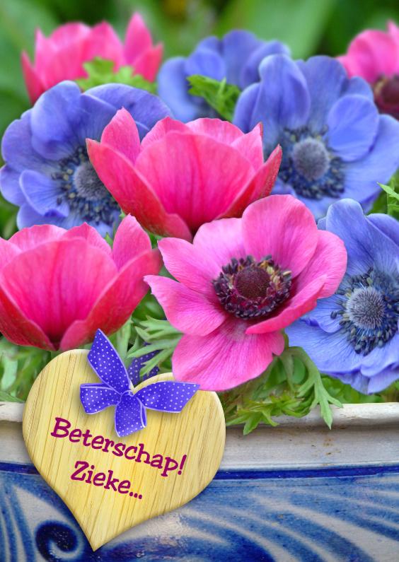 Beterschapskaarten - Anemonen met hart van hout Beter S