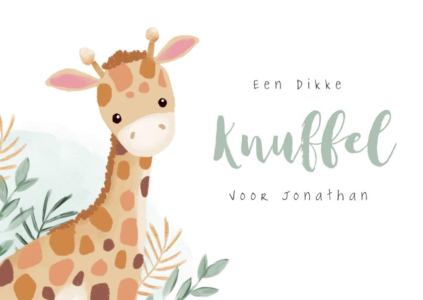 Beterschapskaarten - Beterschap dikke knuffel giraf lief hip