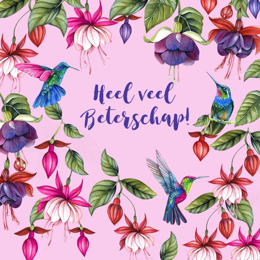 Beterschapskaarten - Beterschap fuchsiabloemen kolibrievogeltjes