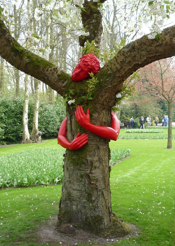 Beterschapskaarten - Beterschap Knuffel een boom