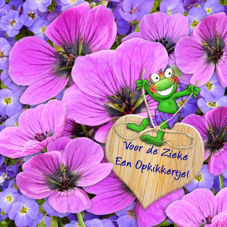 Beterschapskaarten - Beterschap lila bloemen en kikker