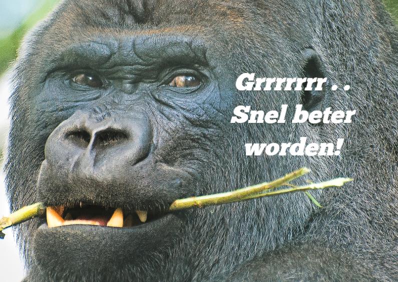 Beterschapskaarten - Beterschapkaart-Gorilla