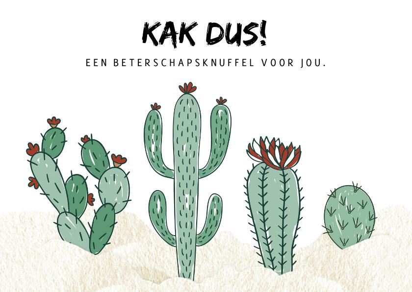 Beterschapskaarten - Beterschapskaart Cactus