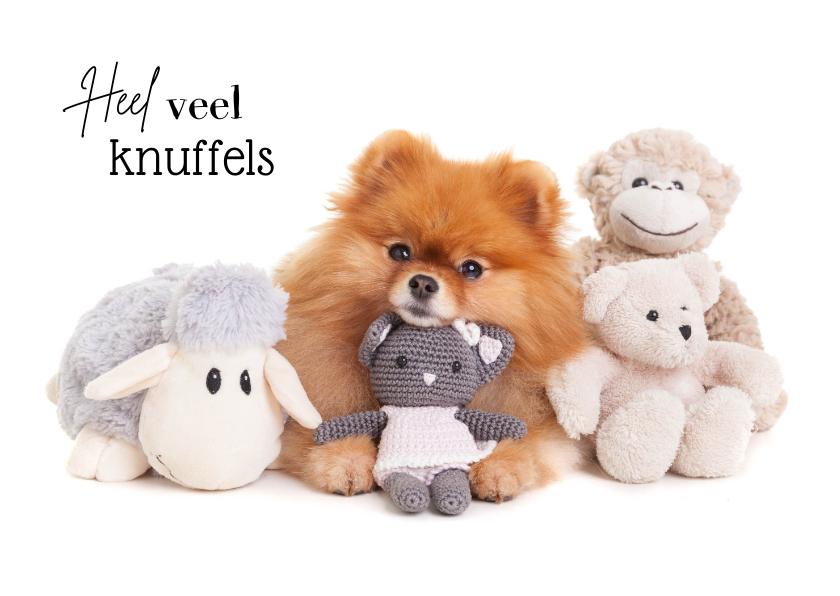 Beterschapskaarten - Beterschapskaart - Heel veel knuffels - hond met knuffels