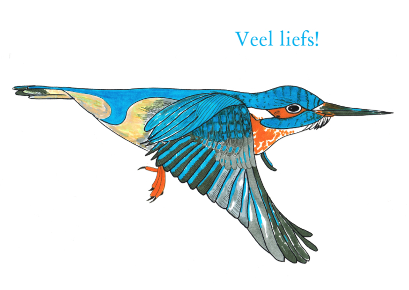 Beterschapskaarten - Beterschapskaart Ijsvogel