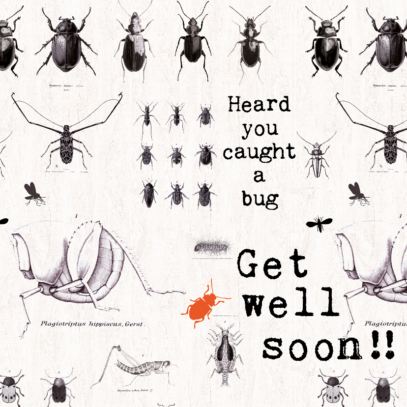 Beterschapskaarten - Beterschapskaart Kevers - GET WELL SOON!!
