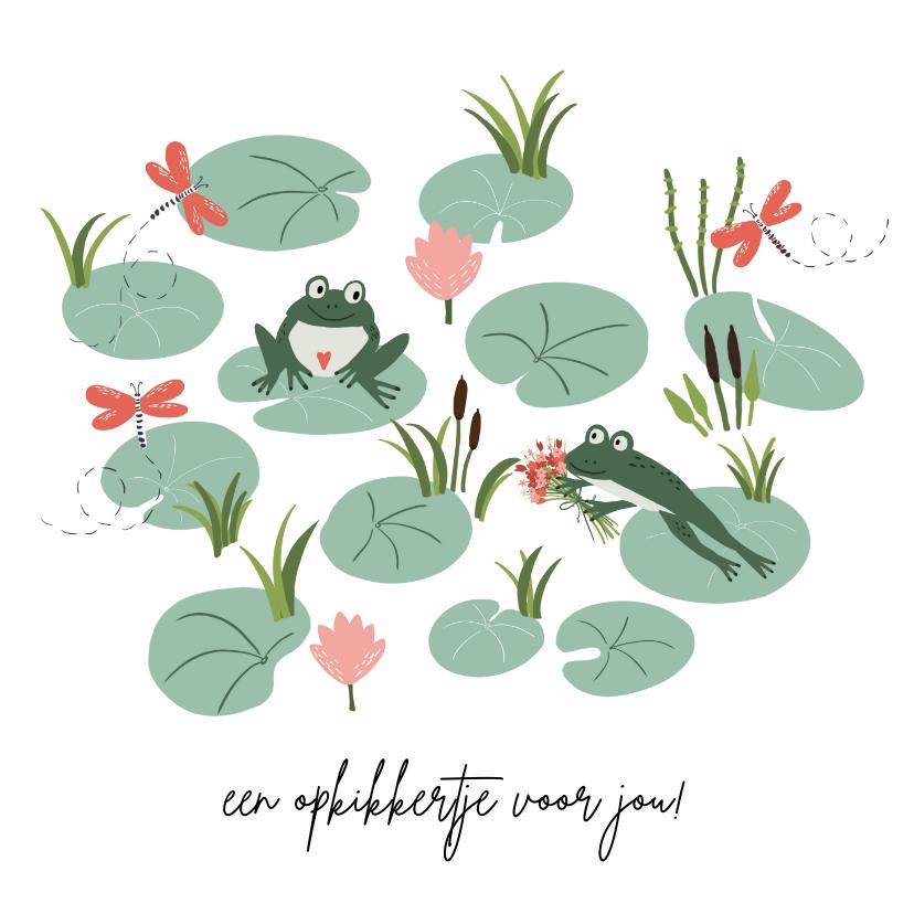 Beterschapskaarten - Beterschapskaart kikker geeft bloemen