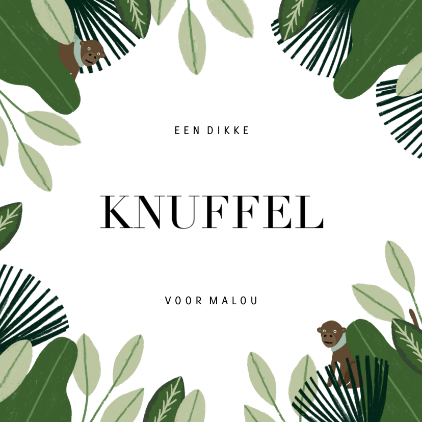 Beterschapskaarten - Beterschapskaart met jungle, aapje en dikke knuffel