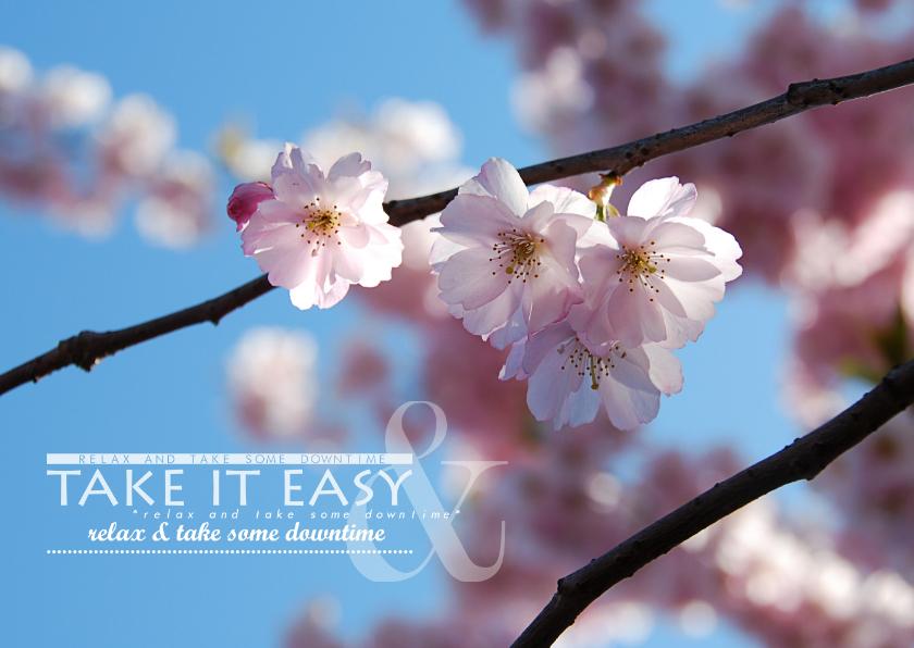 Beterschapskaarten - Beterschapskaart take it easy bloesemtak