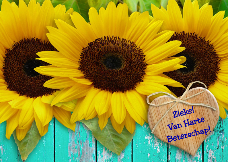 Beterschapskaarten - Beterschapskaart Zonnebloem met hart en wens