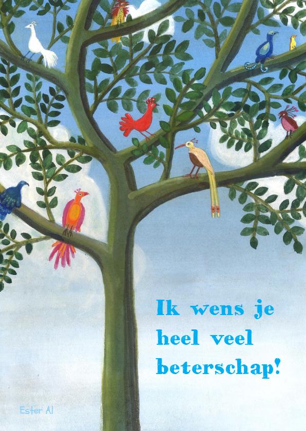 Beterschapskaarten - Beterschapswens - Paradijsvogels