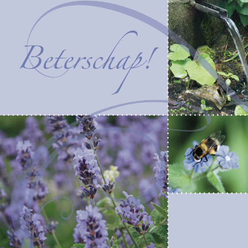 Beterschapskaarten - bloemenkaart met rustgevende lavendel