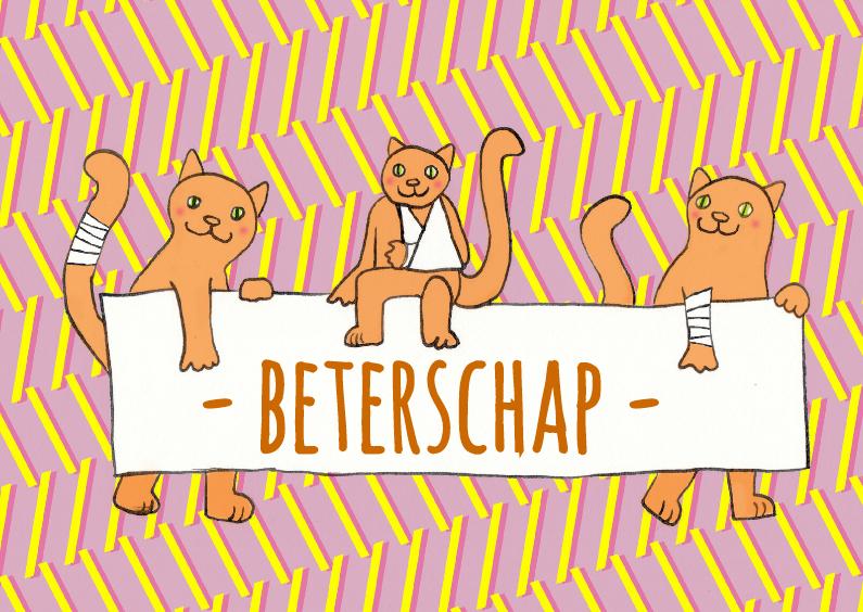 Beterschapskaarten - drie katten met bord