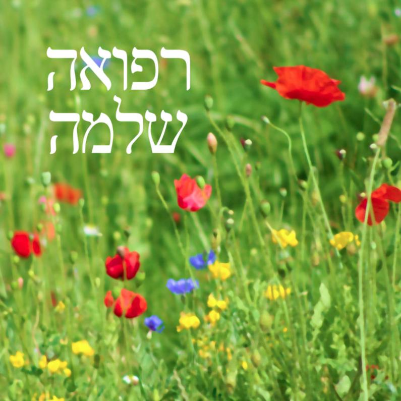 Beterschapskaarten - joods hebreeuws beterschap veldbloemen
