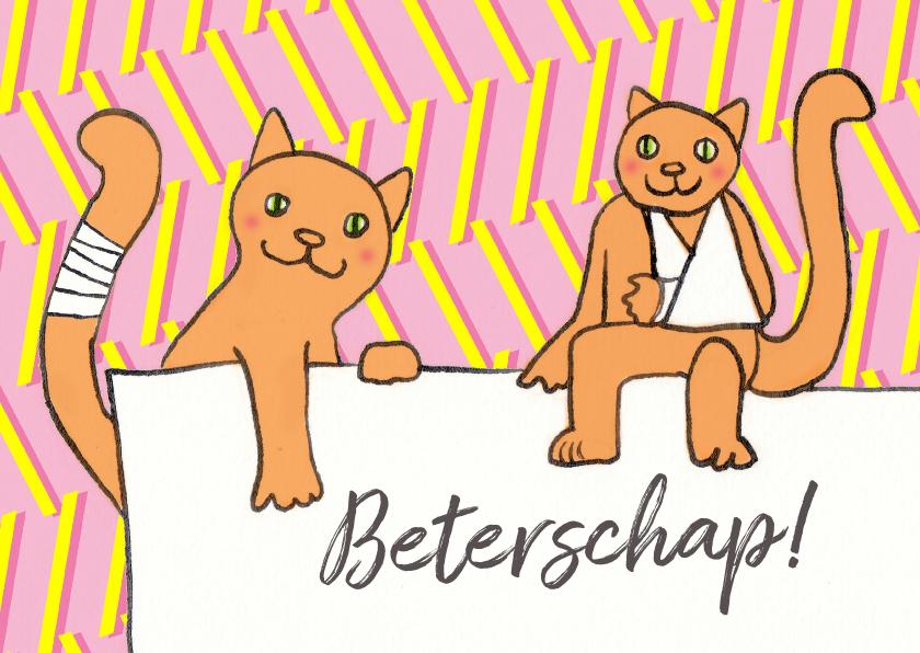 Beterschapskaarten - katten in het gips