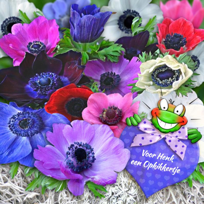 Beterschapskaarten - Leuke beterschapskaart anemonen met opkikker