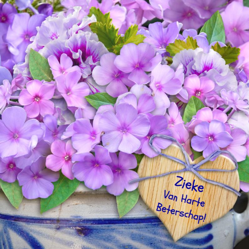 Beterschapskaarten - Mooie beterschapskaart met Floxen in een stenen pot
