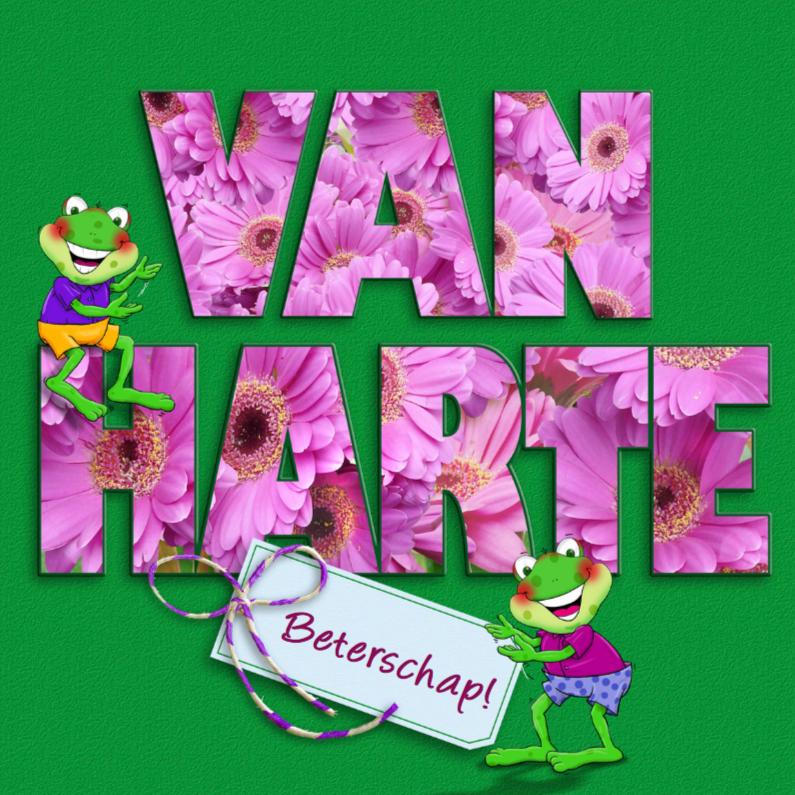 Beterschapskaarten - Opkikkertje met roze bloemen in tekst VAN HARTE