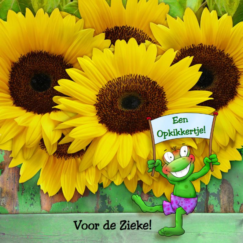 Beterschapskaarten - Opkikkertje met zonnebloemen en spandoek