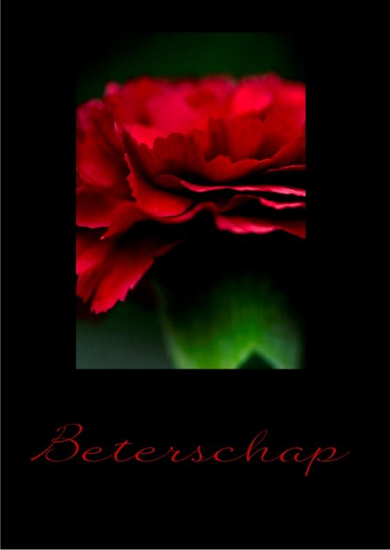 Beterschapskaarten - red flower