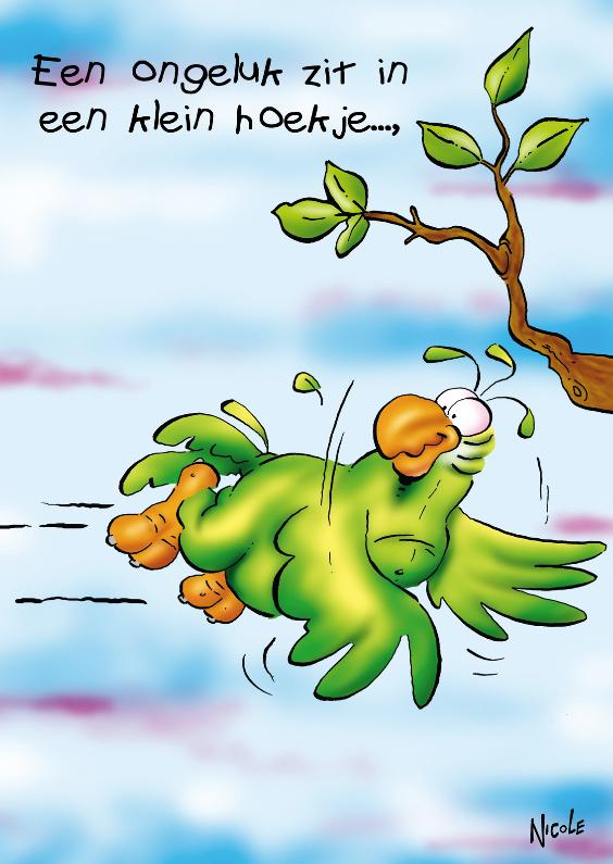 Beterschapskaarten - Rocco beterschap papegaai tegen boom