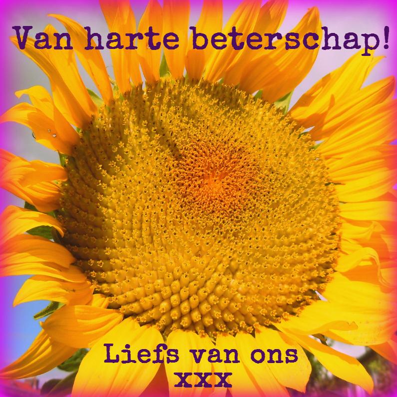 Beterschapskaarten - The power of the sun