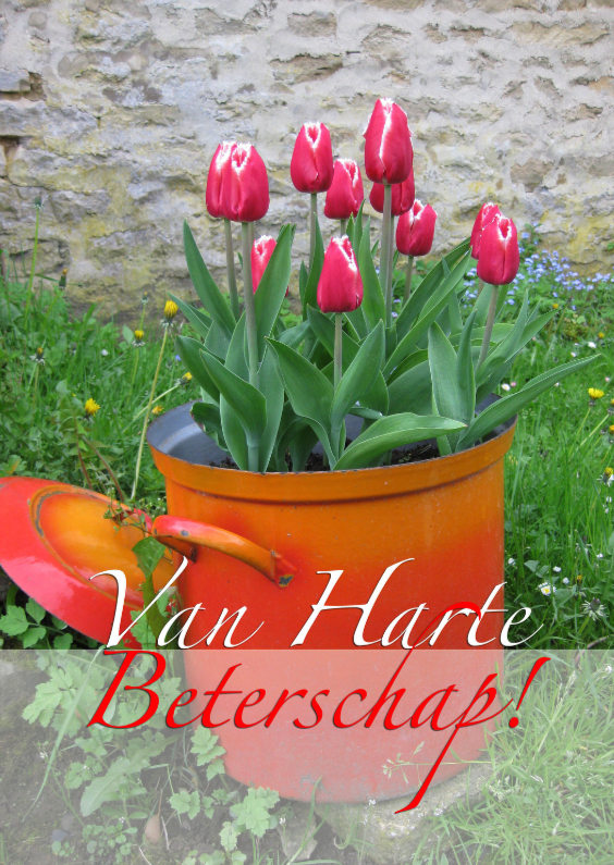 Beterschapskaarten - Van harte beterschap kaart met mooie tulpen