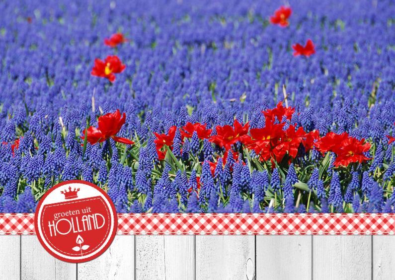 Bloemenkaarten - 14192 Bloemenkaart Holland