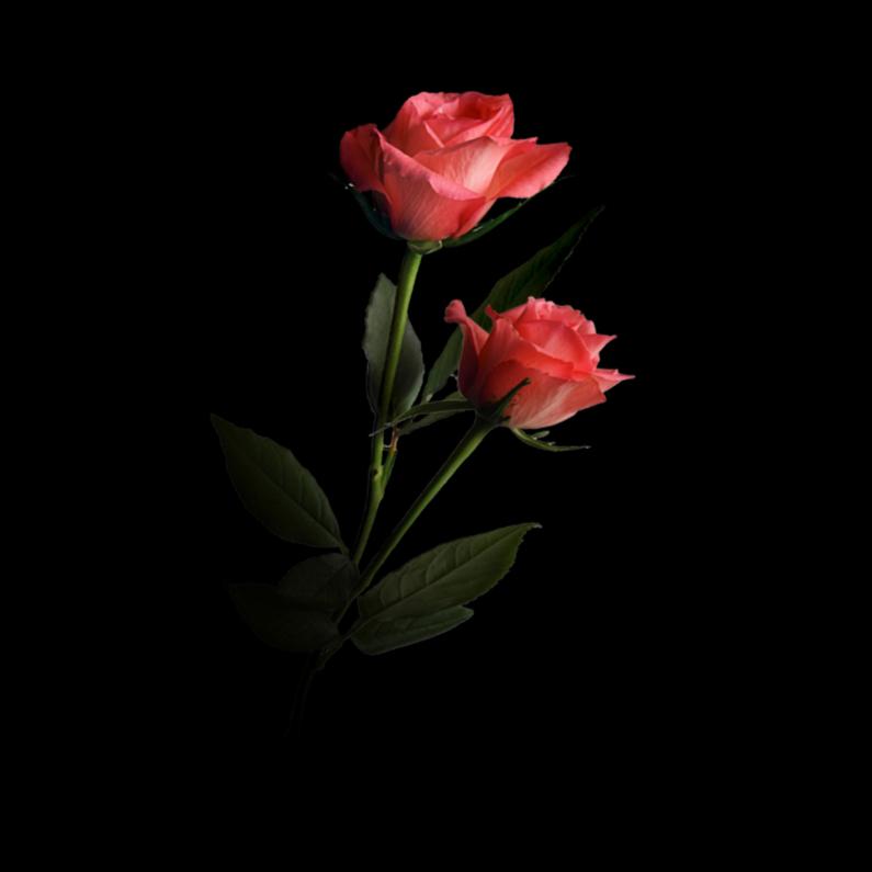 Bloemenkaarten - 2roos4