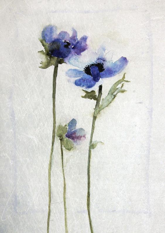 Bloemenkaarten - aquarel anemoon