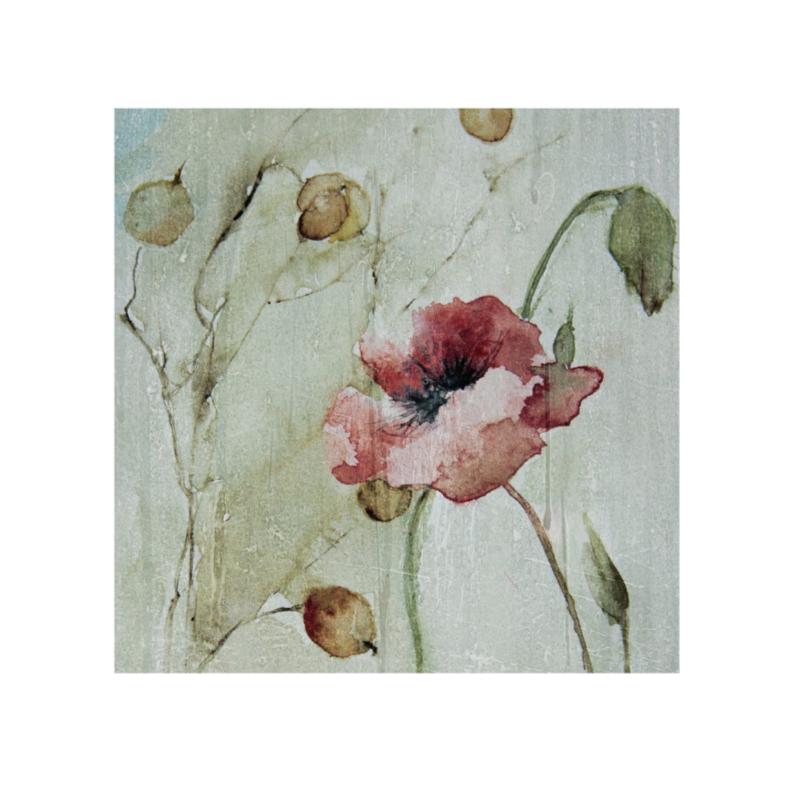 Bloemenkaarten - aquarel klaproos