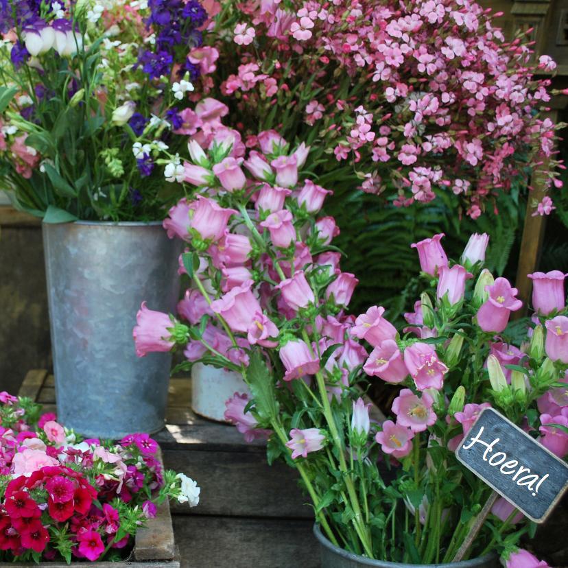 Bloemenkaarten - Bloemen uit Frankrijk