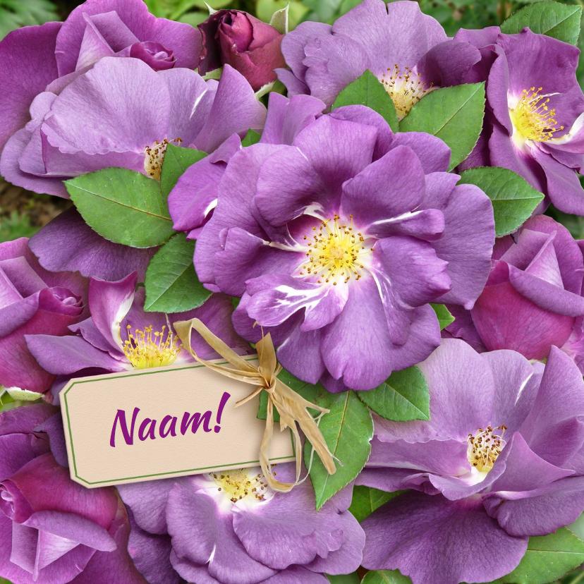 Bloemenkaarten - Bloemenkaart paarse rozen - HE