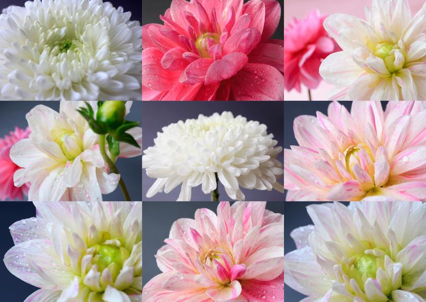 Bloemenkaarten - Bloemenkaart Wij houden van jou ...
