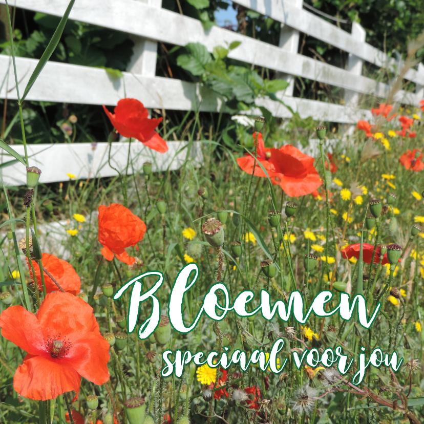 Bloemenkaarten - Bloemenkaart - Wilde bloemen