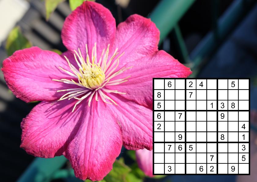 Bloemenkaarten - Fotokaart met bloem en sudoku