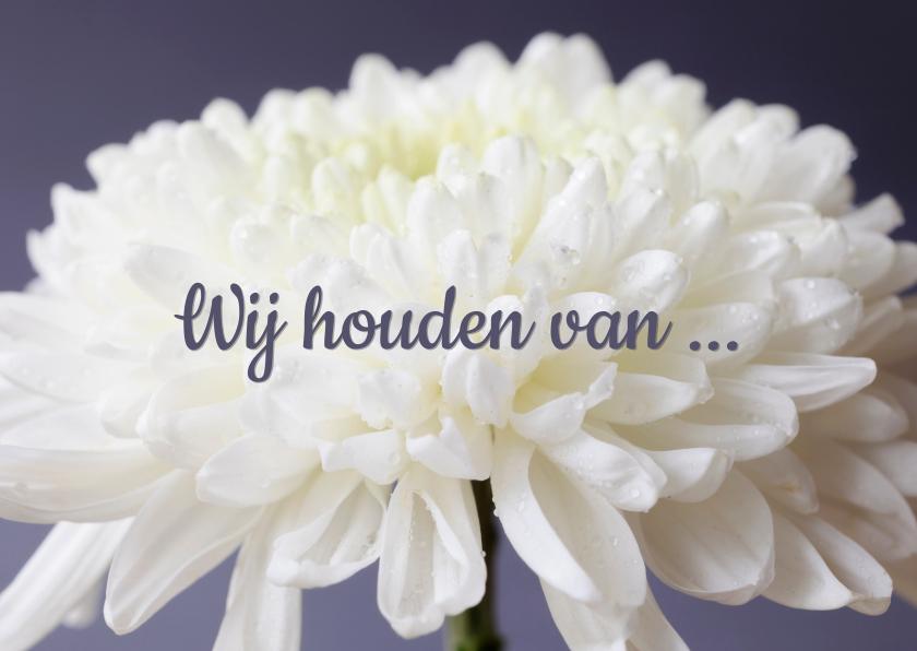 Bloemenkaarten - Fotokaart met een witte bloem en de tekst 'We houden van ...