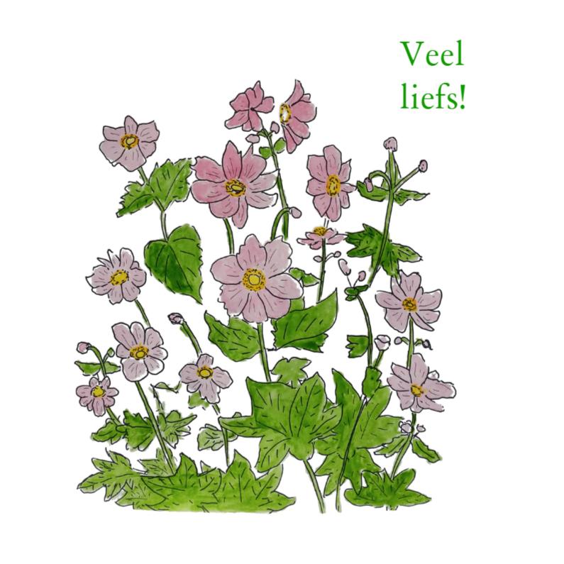 Bloemenkaarten - Herfstanemoon