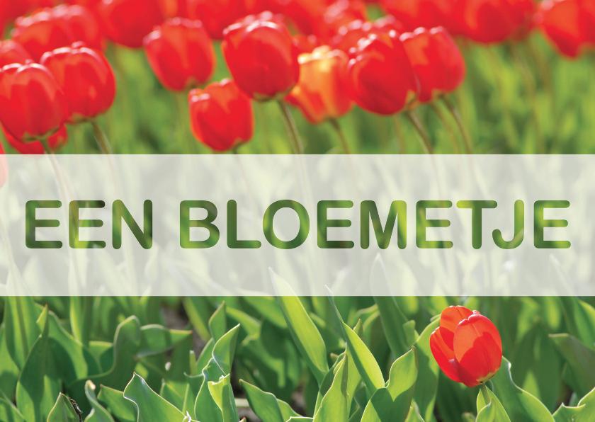 Bloemenkaarten - Kaart Een Bloemetje