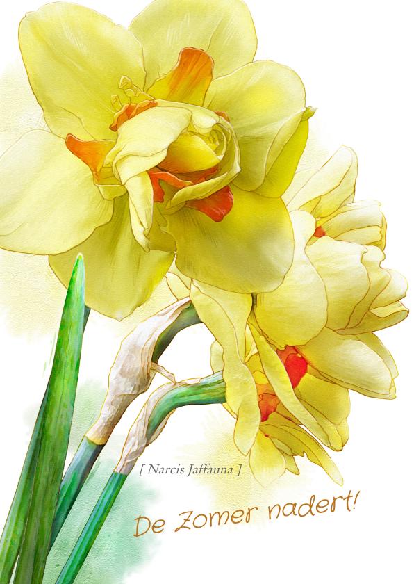 Bloemenkaarten - Mooie bloemenkaart Narcissen op waterverf lentegroet