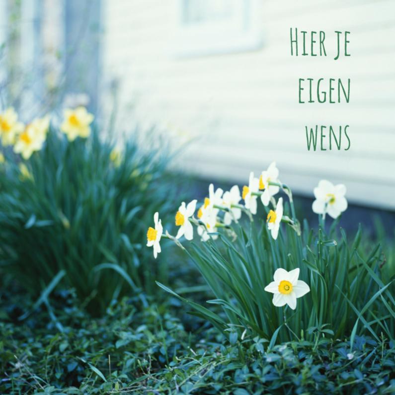 Bloemenkaarten - Narcissen om huis-isf